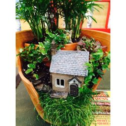 Small Crop Of Fairy Gardens In Pots