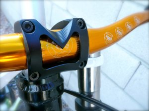 Project DH: Marrow Drop DM stem