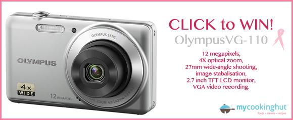 olympus-VG110_copy