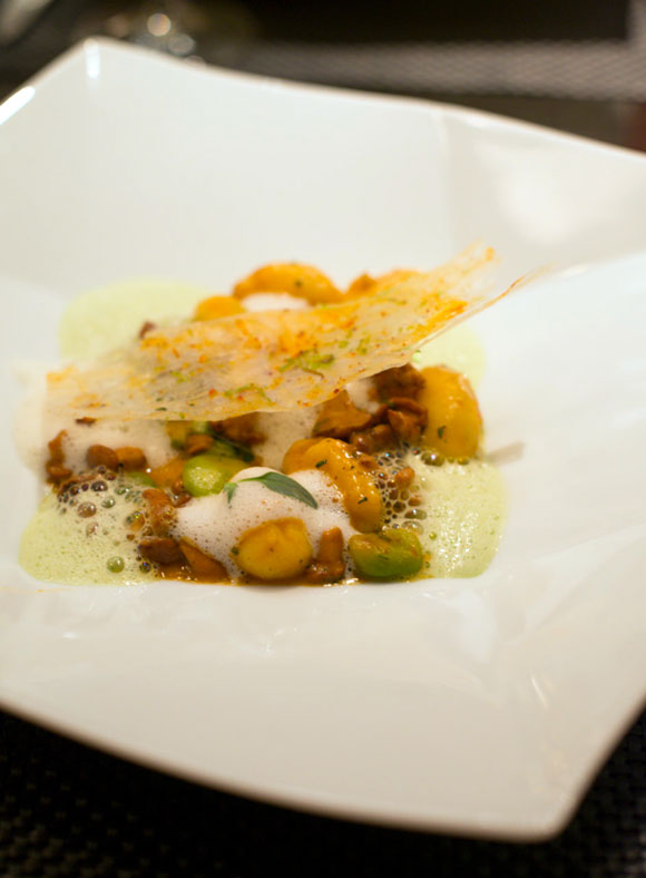 gnocchi-with-mushroom-and-fava-beans