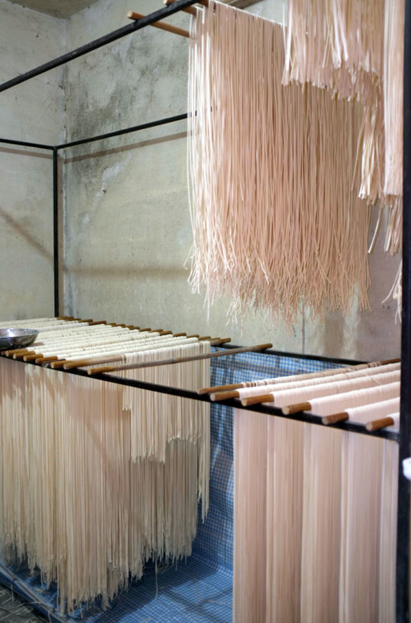 freshly-made-noodles