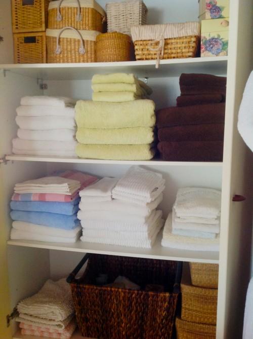 Closet In The Bathroom - My Dear Irene