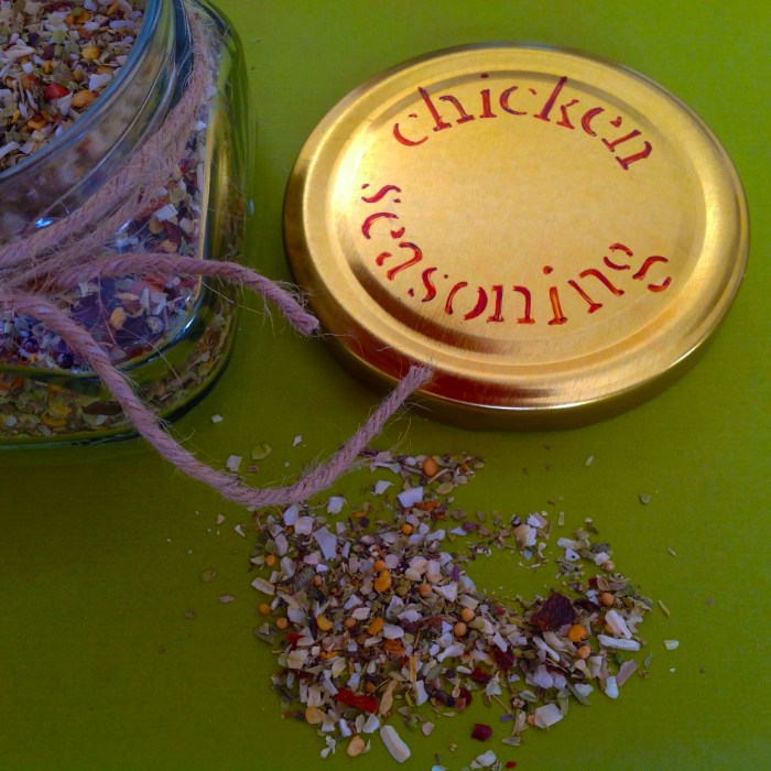 Greek Chicken Seasoning – Make Your Own!