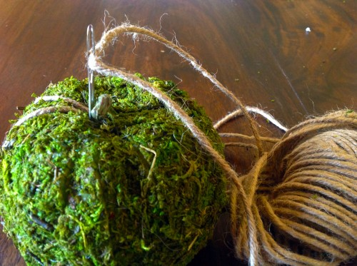 Twine For Moss Pumpkin - mydearirene