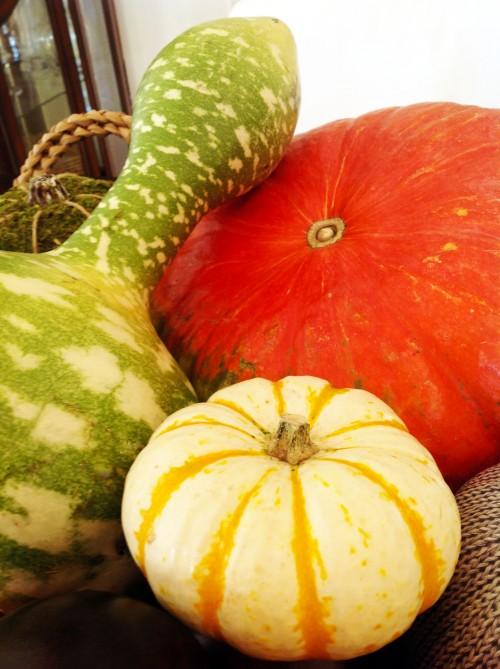 Pumpkins - mydearirene