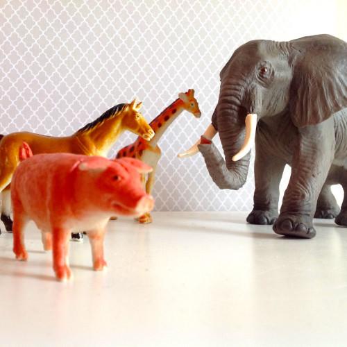 From Animal Toy - mydearirene