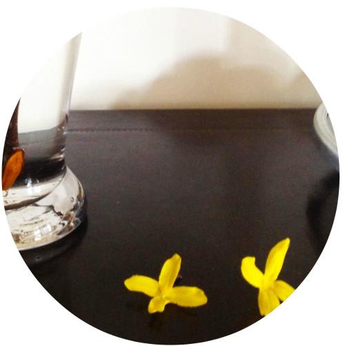 Falling Blooms - mydearirene.com