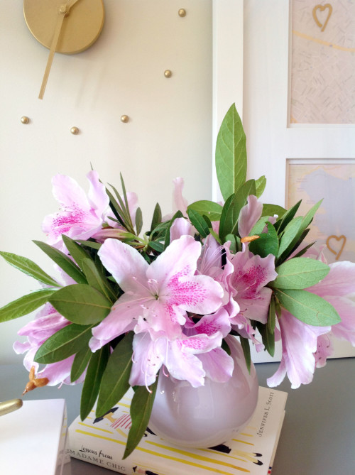 Flowers - mydearirene