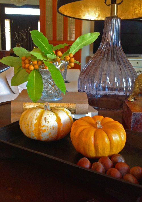 Pumpkins And Hazelnuts