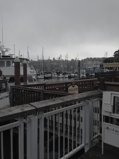 Tiburon Marina - mydearirene.com