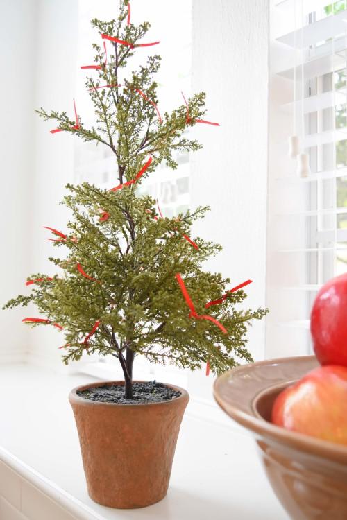 cypress-tree-in-the-kitchen-mydearirene-com