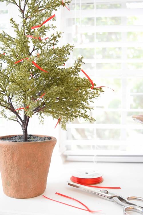 ribbons-on-the-cypress-tree-mydearirene-com
