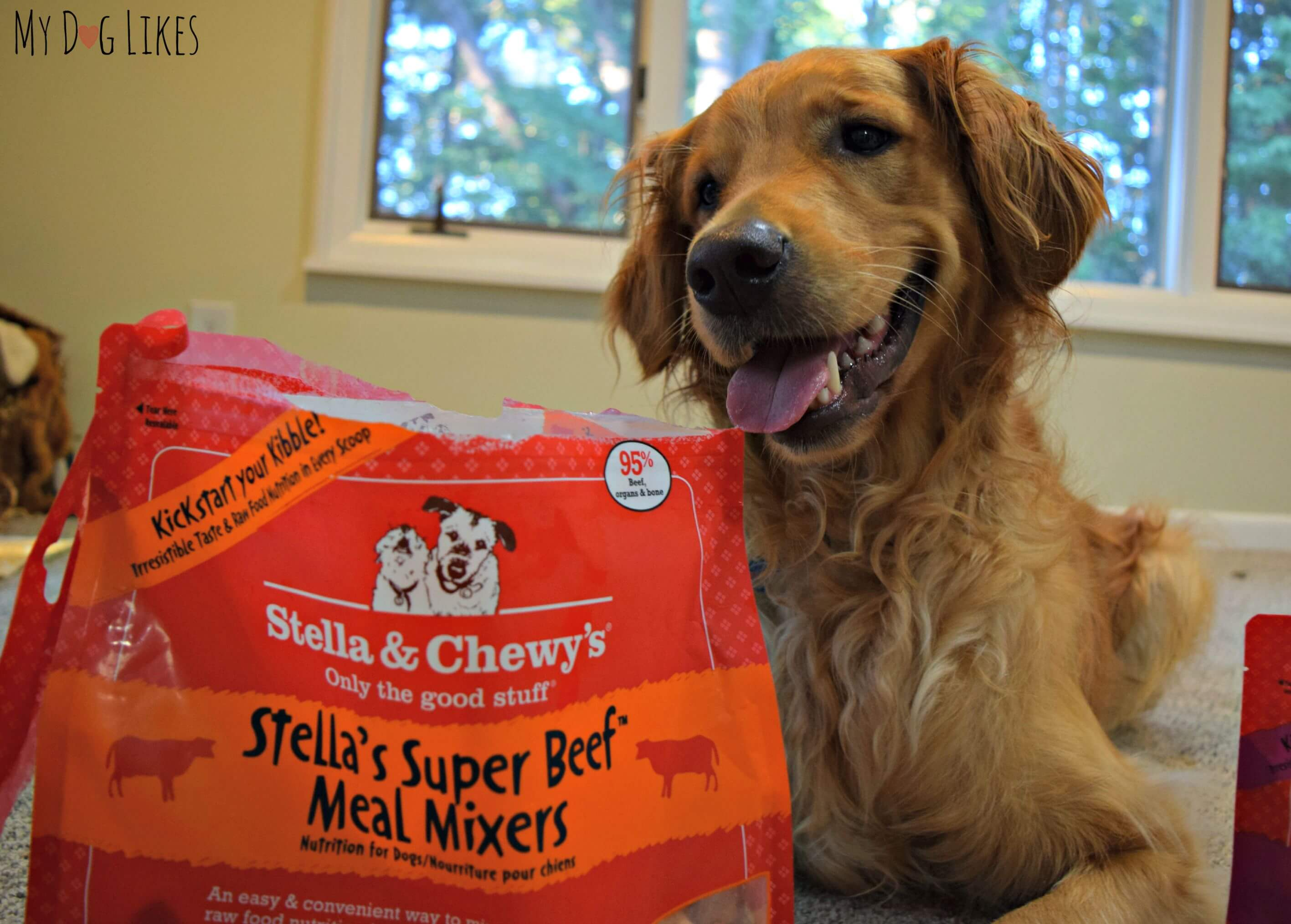 Beauteous Meal Mixers Review It Stella Stella Chewy Near Me Stella Chewy Reviews bark post Stella And Chewy