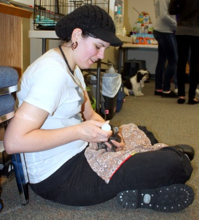 Sarah Wilson tends to a kitten during PAWS Safety Day