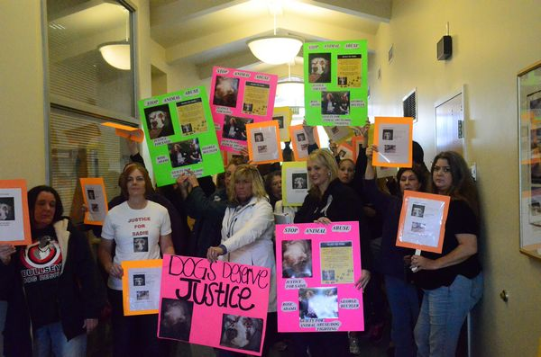 - Protestors gathered at the Edmonds Municipal Court in May 2013 when animal abuse charges were filed against Rose Adams and George Beutler.