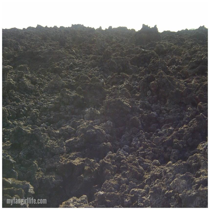 big Island volcanic rock