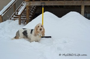 Shoveling is a lot of work!