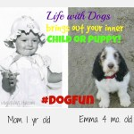 Dog Fun, Bring out your inner child or puppy!