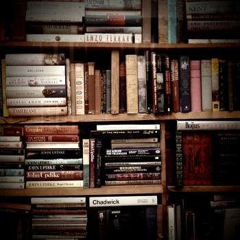john updike collection