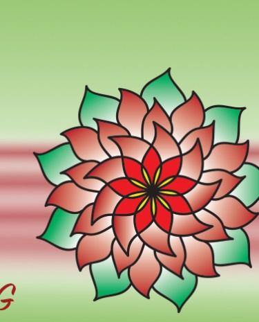 PoinsettiaPic