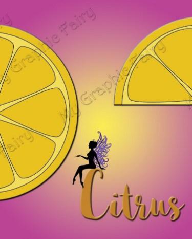 CitrusSlicesThumb