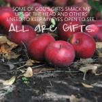 Praise & Joy in the Everyday