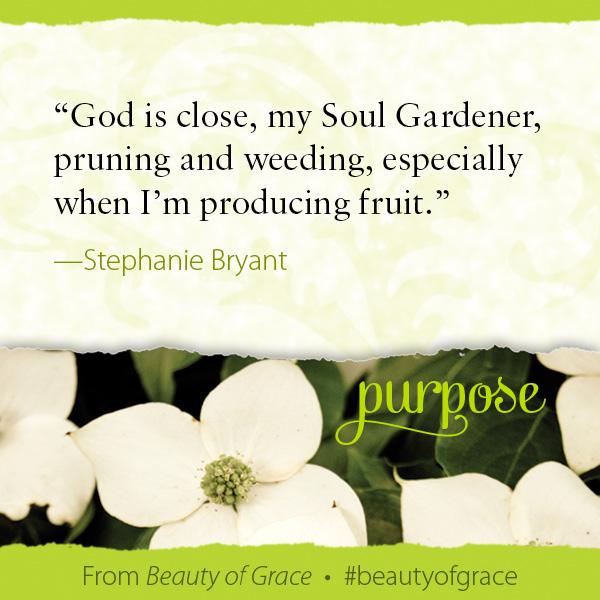 Stephanie Bryant The Beauty of Grace #beautyofgrace