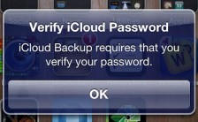 verify-icloud-password-iphone