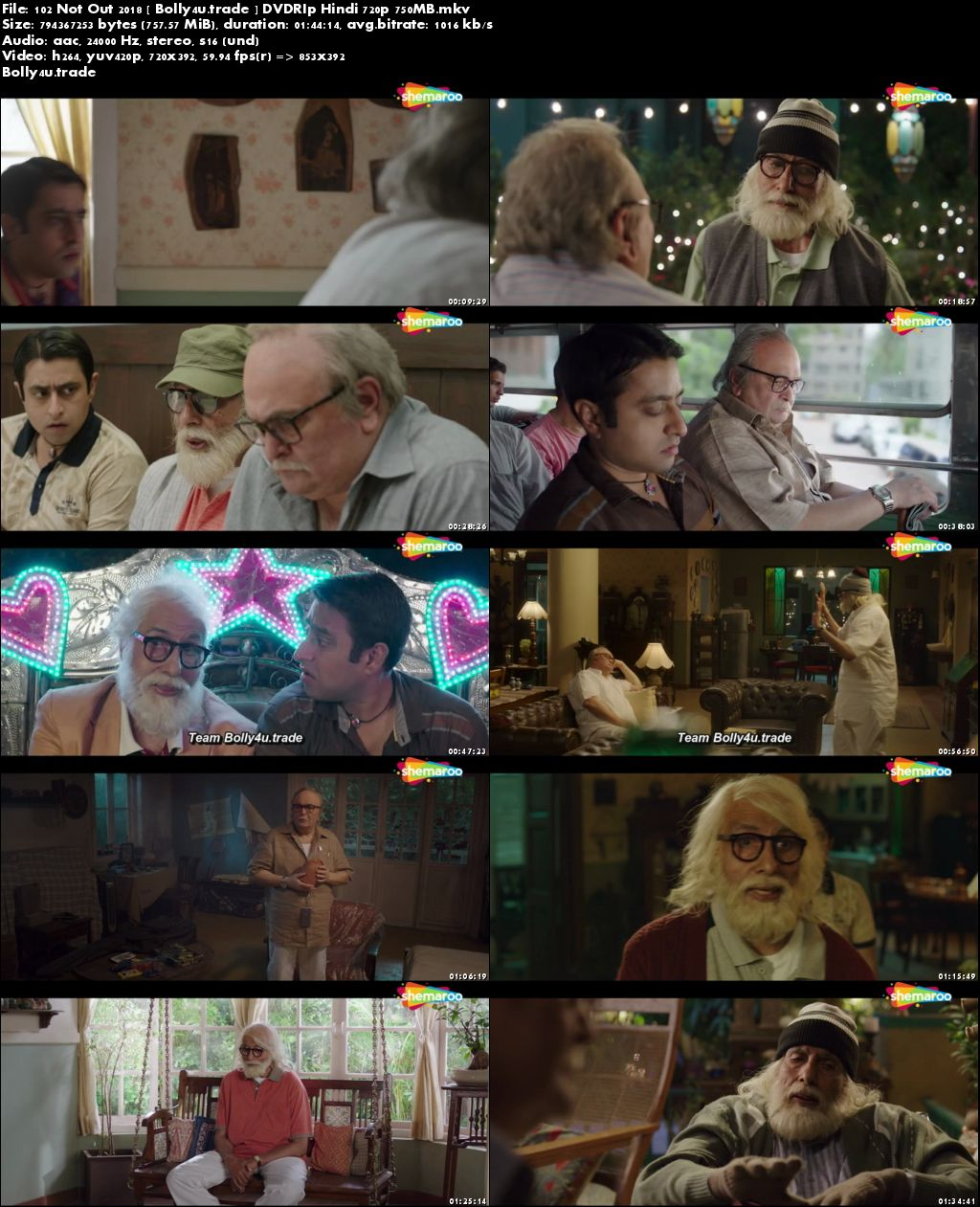 102 Not Out 2018 DVDRip 300MB Full Hindi Movie Download 480p