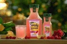 simply raspberry