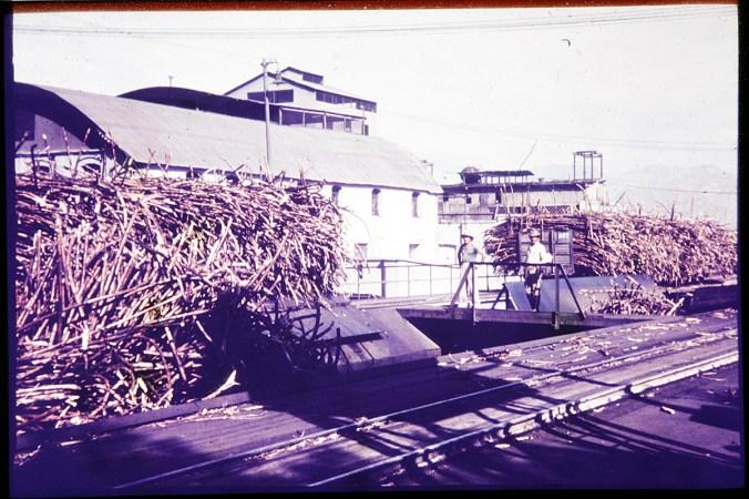 Zuckerrohr auf Waggons vor der Fabrik in Casa Grande