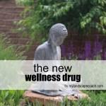 wellnessinnaturpost