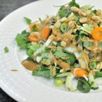 Spicy Thai Peanut Bok Choy Salad