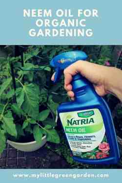 Small Of Garden Safe Neem Oil