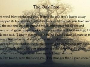 The-Oak-Tree