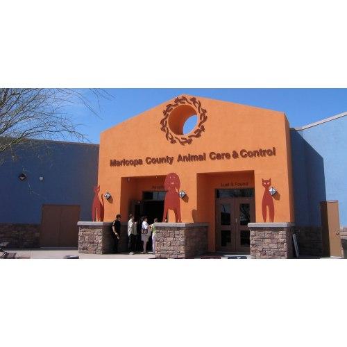 Medium Crop Of Maricopa Animal Care And Control