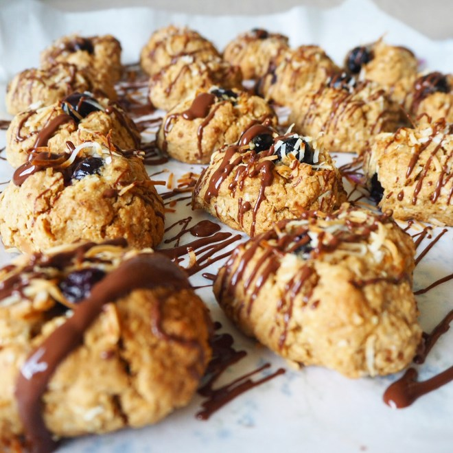 blueberry coconut cookies with choc drizzle