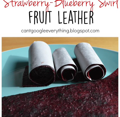 Strawberry Blueberry Swirl Fruit Leather!