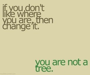 tree and change
