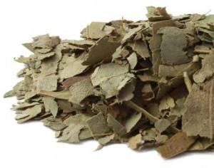 eucalyptus_leaf-product_1x-1403631533