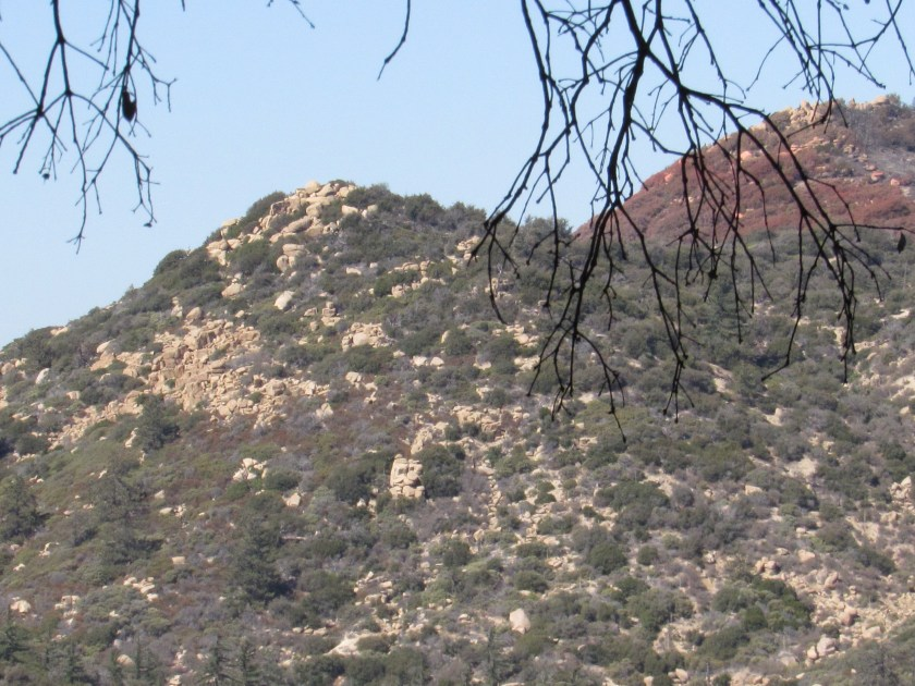 A hill with boulders in the San Bernardino Mountains.