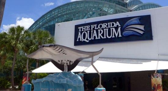 Florida Aquarium mytravelingkids.com