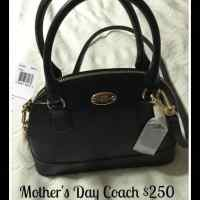 Coach Purse Giveaway 5/10 US