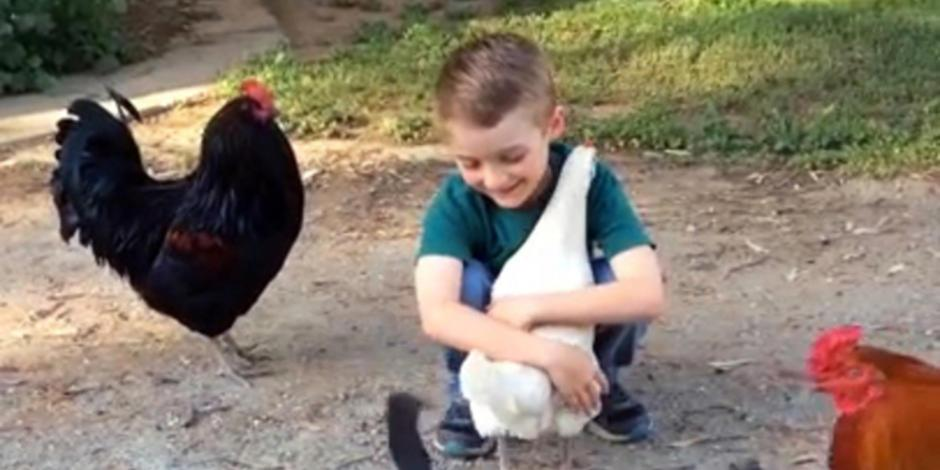 Apprehensive Chicken Hugs Boy After Making Sure It's Really Him