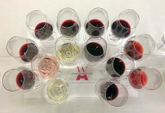 A flight of Argentine wines