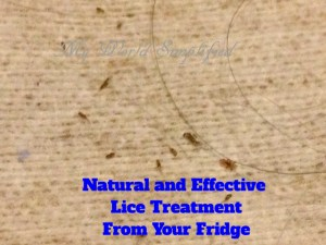safe and natural lice treatment