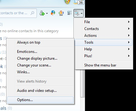msn live messenger history option