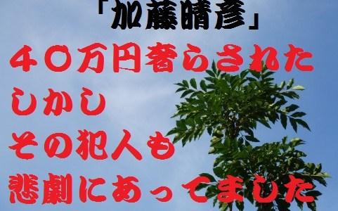 加藤晴彦4