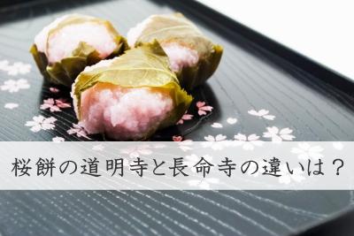 sakuramochi01