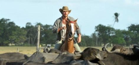 foto de Gabriel Braga Nunes montado em cavalo dividindo boiada